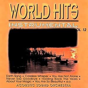 World Hits Instrumental Vol. 12