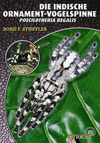 Die Indische Ornamentvogelspinne: Poecilotheria regalis (Art für Art)