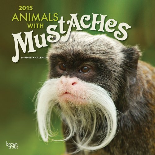 Animals with Moustaches 2015 Wall by BT (2014-09-01)