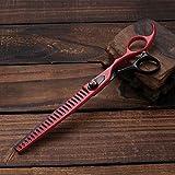 Igspfbjn 8,0 Pouces Dents de Compagnie d'animaux coupés en os de Poisson Ciseaux beauté Ciseaux (Color : Black Red)