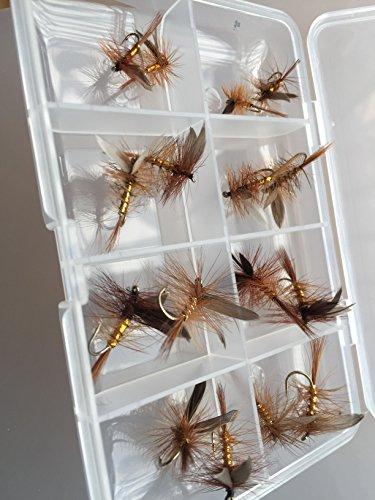 Wickham Fancy Forellenangeln-Zubehör, Trockenfliegen-Set, 16Stück , inkl. Fliegenbox mit Clip-Verschluss