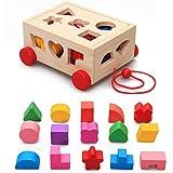 Nachzieh Holzspielzeug, Kubus, Motorik Spielzeug, bunt, Holz Spielzeug 1+ Geschenk Kinder Kleinkinder