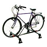 Carpoint 0922601 Fahrradträger universal