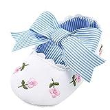 Babyschuhe Prinzessin Schuhe LMMVPMädchen Leder Schuhe Sommer Schuhe Kids Neugeborene Schuhkleinkind Lauflernschuhe Schuh-Turnschuh Blume Schuhe (Weiß, 11(0 ~ 6 Monate))
