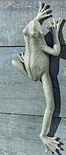 Wandobjekt Frosch hellbraun Kunstharz (Frosch gestreckt 49cm) -