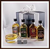 Geschenk World Of Whiske(y)s 4 Miniaturen mit Glas & Kühlsteinen, kostenloser Versand