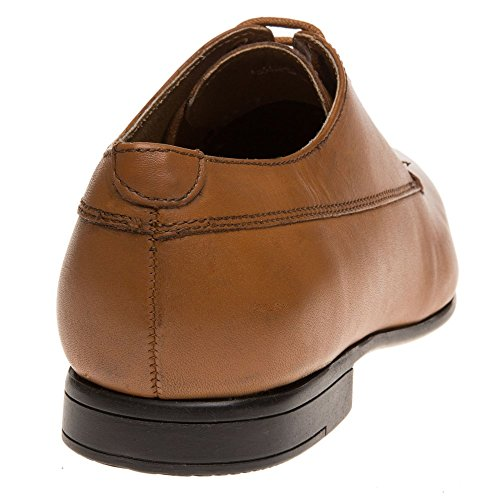 Ben Sherman Ripy Plain Toe Homme Chaussures Fauve Beige