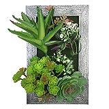 PietyDeko 3D Bilderrahmen mit Sukkulenten Plastikblumen Hängende Sukkulenten Plastik Box Rahmen Pflanzen Dekorative Kunst Grün