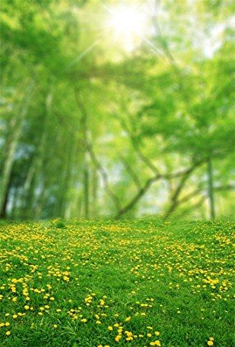 YongFoto 1,5x2,2m Vinyl Foto Hintergrund Frühling Landschaft Grünes Gras Gänseblümchen Wald Sommer Kamille Natur Fotografie Hintergrund für Fotoshooting Portraitfotos Party Kinder Hochzeit Fotostudio Requisiten