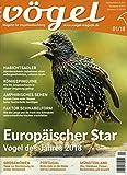 Vögel - Magazin für Vogelbeobachtung [Jahresabo]