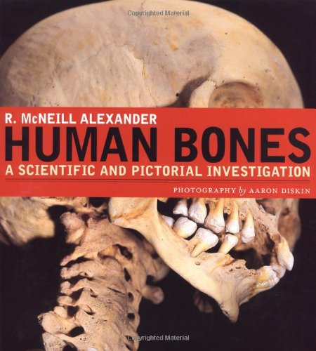 Human Bones: A Scientific and Pictorial Investigation