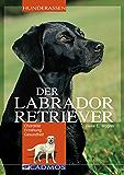 Labrador Retriever: Charakter, Erziehung, Gesundheit (Cadmos Hunderassen)