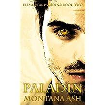 Paladin (Elemental Paladins Book 2) (English Edition)