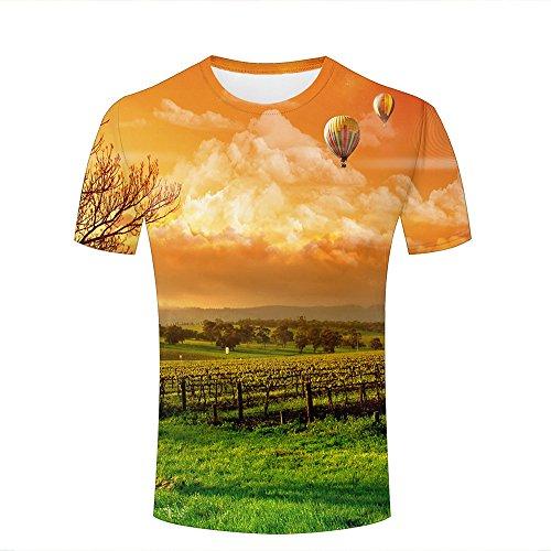 Mens Casual Design 3D Printed Vineyard and Orange Sky Short Sleeve Summer T Shirts Tees S