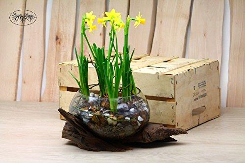 Root decor wurzel luxus glas deko vase handgefertigt und mundgeblasen in der eu 42x18cm - Luxus wohnaccessoires ...