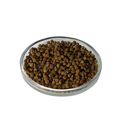 LIEBESGUT Bio Adult mit frischem Rind 400g, 1er Pack (1 x 400 grams) - - 2
