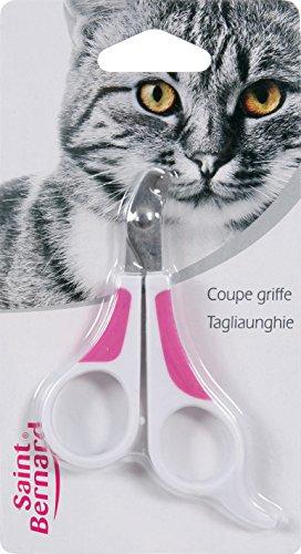 SAINT BERNARD Coupe Griffe pour Chat