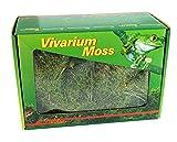 Lucky Reptile VM-150 Vivarium Moos 150 g, Terrarienmoos