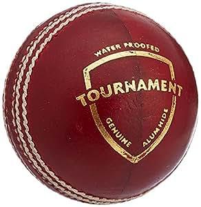 SG Tournament Leather Ball