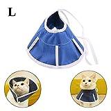 ASOCEA - Collar de recuperación ajustable para perros y gatos con cono, suave y cómodo, para la curación, de mascota, para perros y gatos para la medicación para el cuidado de la herida y la curación