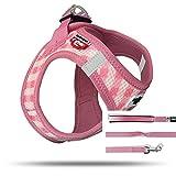 Curli Puppy Vest Geschirr Air-Mesh + Basic Leine Pink-Caro VP-Pika Größe 3XS