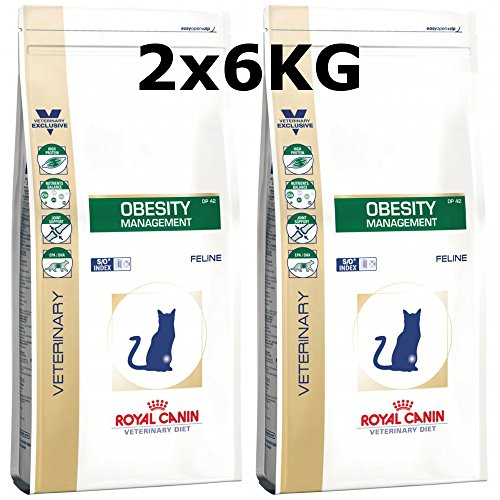 Royal Canin Obesity Management Katze Trockenfutter 2 x 6kg = - Verstopfung Katzenfutter