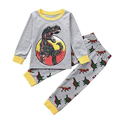 (Sonnena Tops Jungen Hoodies Winter 2 Teile/Satz Kleinkind Infant Baby Mädchen Kleidung Set Karikatur Dinosaurier Hoodie Tops Langram Sweatshirt+ Hosen Outfits)