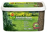 COMPO SAAT Schatten-Rasen 2 kg | Rasensaat für 100m² Traumrasen