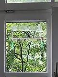PEDY Großer Fenster Vogelfutterspender, Transparenter Saugfuß Durchsichtiger Vogelhaus Fenster Vogelfutterspender Großer Acryl Vogelfutterspender Vogelfutterstation Test