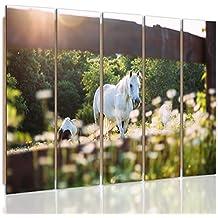 Feeby Frames, Cuadro de pared - 5 partes - Cuadro decorativo, Cuadro impreso, XXL Cuadro Deco Panel, Tipo C, 140x300 cm, CABALLOS, ANIMALES, NATURALEZA, GRANJA, BOSQUE, VERDE, BLANCO