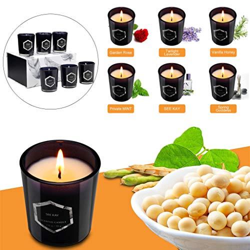 Duftkerze Teelicht Aromatherapie Geschenkset Natürlicher Sojaöl Aroma Kerze 1188g, 6PCs Rose Lavendel Vanillehonig See KEE Frühlingsgöttin Minze Duft Tischdeko - VNEIRW Luxuriös Geschenk (Schwarz)