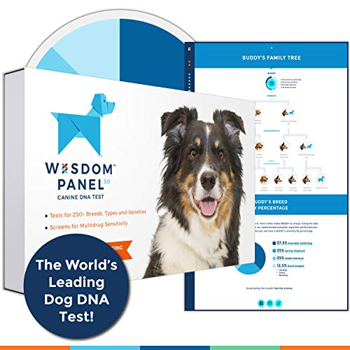 Wisdom Health Canine DNA Test Kit
