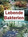 100 g lebende Bakterien + 2 große Schwimmpflanzen von 518 auf Du und dein Garten