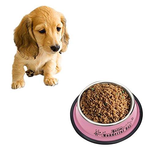 Jdon-pet, Bols en acier inoxydable, antidérapant, peinture colorée, imprimés, animaux de compagnie, bols, diamètre: 13 cm (Color : Pink)
