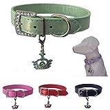 Lushpetz Hundehalsband mit Krone Charme Erhältlich in Rosa, Blau, Rot, Grün, Weiß oder Lila für XS, Kleine, mittlere und große Rassen (Groß, Grun)