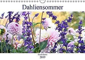 Dahliensommer (Wandkalender 2019 DIN A4 quer): Dahlien, die begeistern (Monatskalender, 14 Seiten ) (CALVENDO Natur)