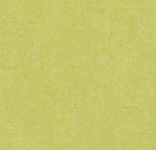 Forbo Marmoleum Linoleum Parkett spring buds Click einfach verlegen