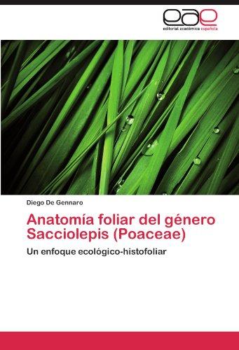 Anatomia Foliar del Genero Sacciolepis (Poaceae) por Diego De Gennaro