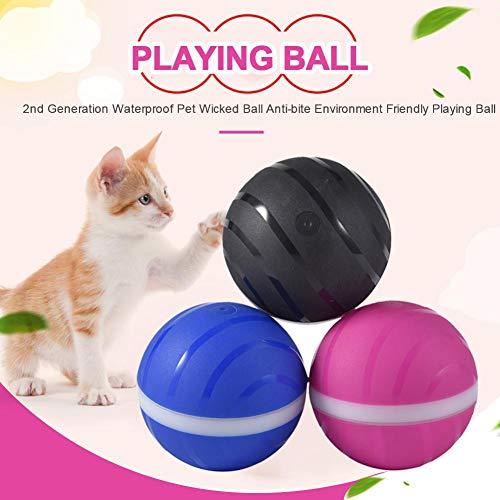 Sunnyushine Elektronisches Hundespielzeug Ball Katzenbälle,wasserdichte Desig/USB Lade / 360-Grad-Scrolling/Anti-Biss Und Automatischer Schlaf/Automatische - Hundespielzeug Elektronisch