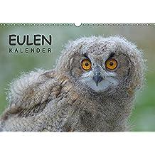 Eulen-Kalender (Wandkalender 2018 DIN A3 quer): Faszinierende Portraits und Flugaufnahmen europäischer Eulen (Monatskalender, 14 Seiten ) (CALVENDO Tiere) [Kalender] [Apr 01, 2017] Wolf, Gerald