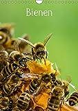BienenAT-Version (Wandkalender 2018 DIN A4 hoch): Bienen für das ganze Jahr (Monatskalender, 14 Seiten ) (CALVENDO Tiere) [Kalender] [Apr 01, 2017] Bangert, Mark