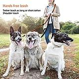 Petcomer Smart 7 in 1 Multifunktions-Hundeleine Heavy Duty Einstellbare Durable Nylon 3M Reflektierende Material Hands Free Walking Training Laufen Leine für 2 Hunde (L:1″ Width,3.6Ft-6.6Ft, Grün) - 5