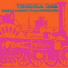 Psychedelic Train ( Expan.Edition 13 Bonustracks)