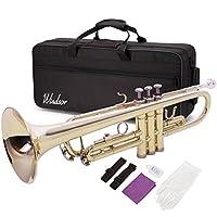 Windsor MI-1001 - Trompeta (en si bemol, para nivel principiante)