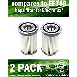 Lot de 2. Filtre à cartouche HEPA pour les aspirateurs Electrolux (alternative à EF75B, 9001959494)