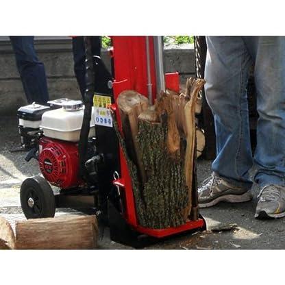 Woodline WL10pantalla H Multipl–Astilladora de leña con motor Honda GX160–10toneladas)