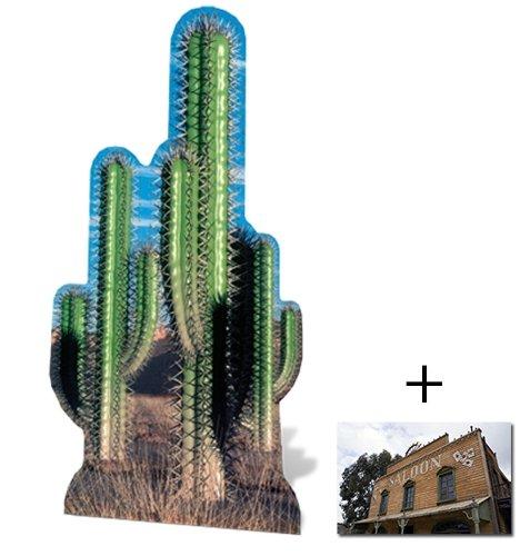 cactus-group-cardboard-2d-standup-cutout-plus-20x25cm-photo