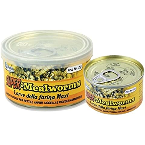 Mondial Fauna Super Mealworms 35 gr - Larve della farina maxi in scatola, alimento ideale per rettili, anfibi, uccelli e piccoli mammiferi