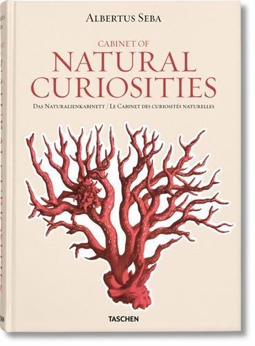Albertus Seba. Cabinet of Natural Curiosities (Jumbo 25) por Dr. Irmgard Müsch