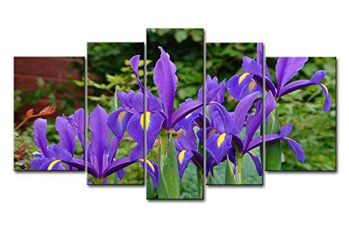 Leinwanddruck Bild für Home Decor Deep Purple Iris 5Gemälde Moderne Giclée-gespannt und gerahmt-Kunstwerken Öl die Blume Bild Foto Druck auf Leinwand (Purple Iris-bild)